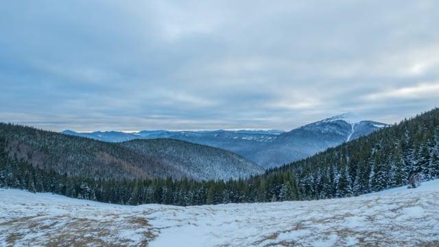 Winter in the Carpathians, Ukraine - 4K Nature Documentary Film