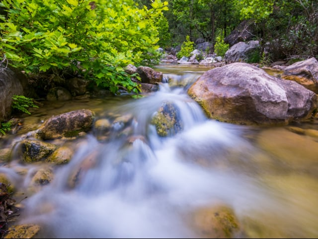 Clear Mountain Stream