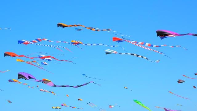 Kite Festival in WA