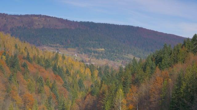 Autumn in the Carpathians 2