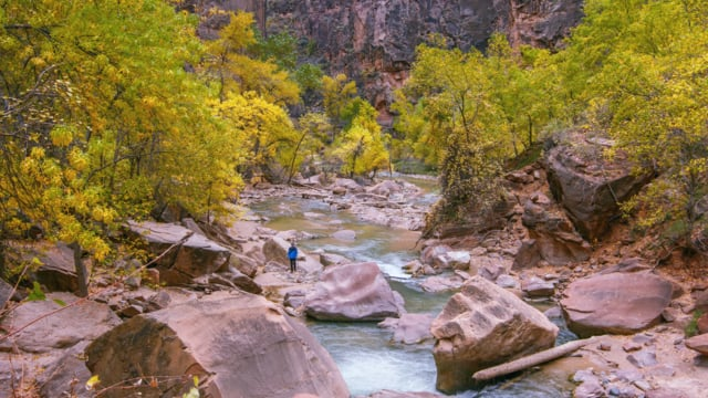 Zion National Park. Autumn