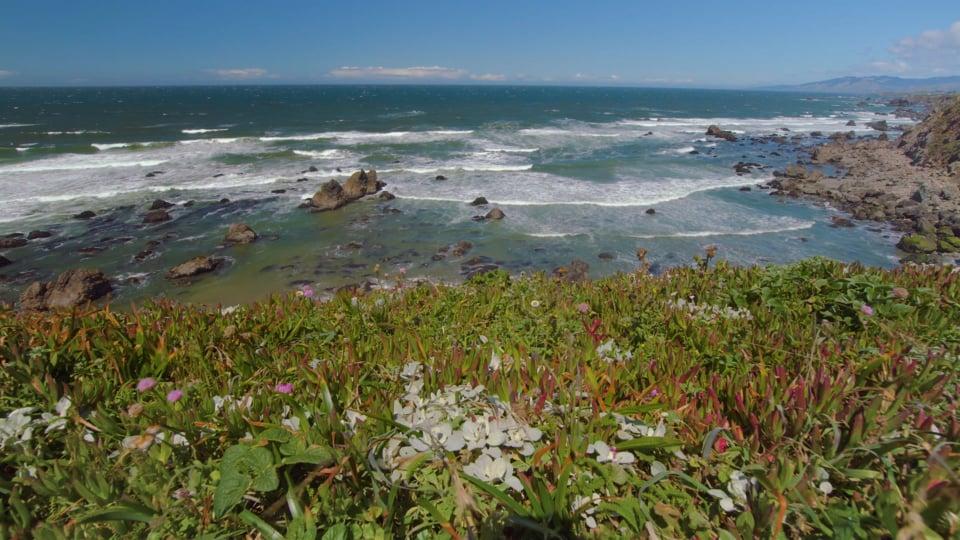 Sonoma Coast State Park, California Episode-3