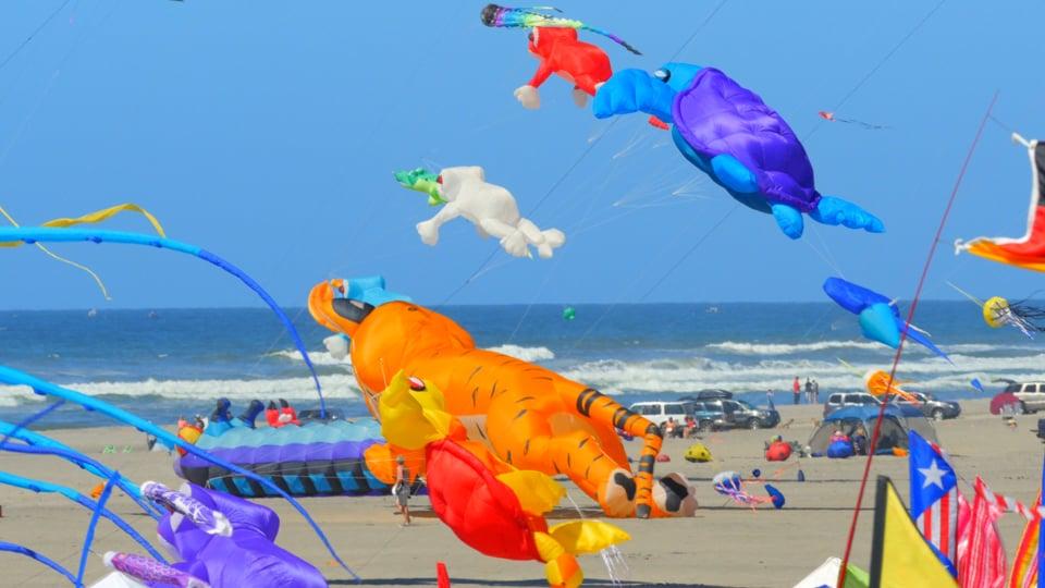 Kite Festival WA