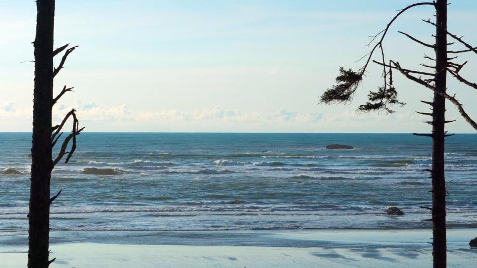 Ruby Beach Winter