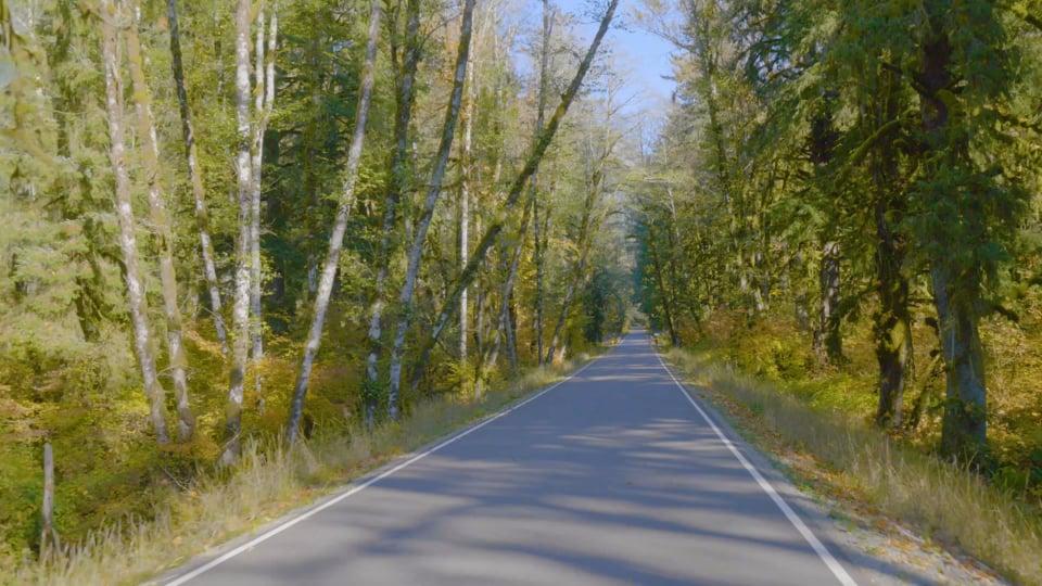 Snoqualmie Scenic Drives