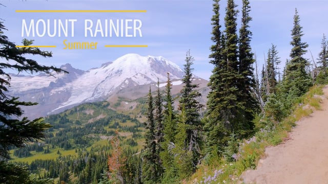 Mount Rainier. Summer