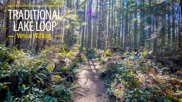 Walking in the Woods/Traditional Lake Loop/Snoqualmie