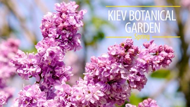 Kiev Botanical Garden, Spring