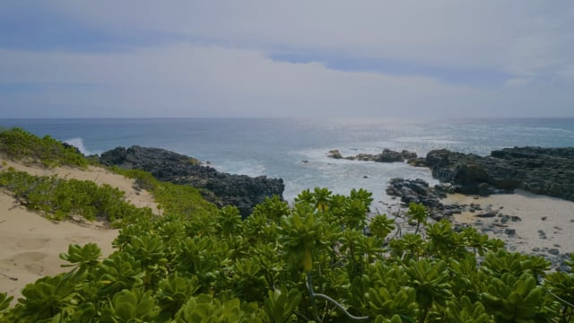 Oahu Beaches: Kaena Point State Park
