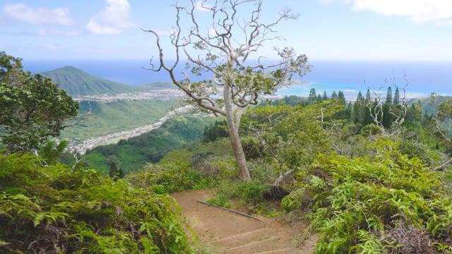 Views from Kuliouou Ridge Trail, Oahu, Hawaii