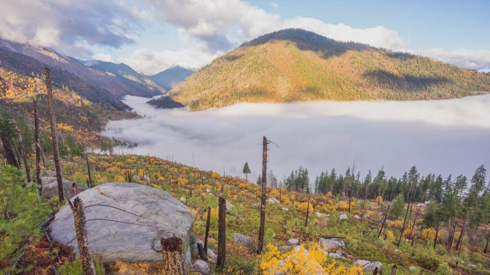 Fall Foliage in Washington State