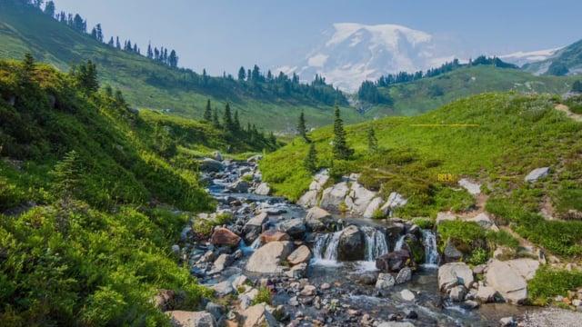 Pacifying Stream near Mt. Rainier
