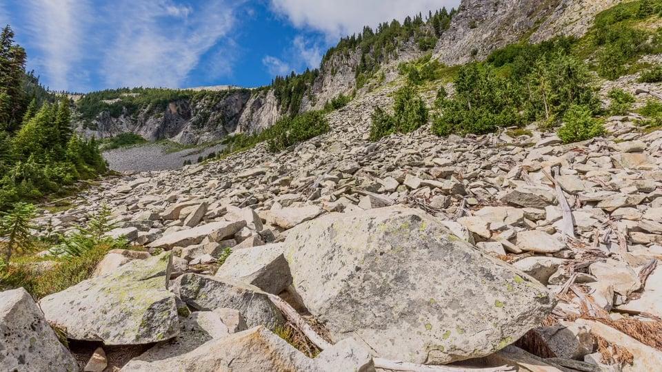 Amazing Nature of Washington State
